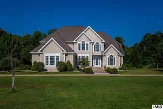 Single Family for sale in 1260 S SANDSTONE RD, Spring Arbor, MI, 49283
