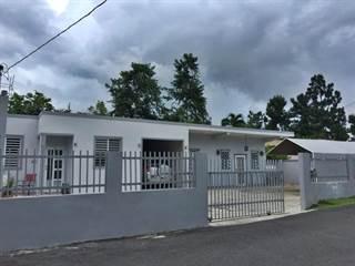 Single Family for sale in Km 18.6 CARR 172, Cidra, PR, 00739