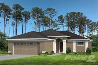Residential Property for sale in 12325 LARK SPARROW, Annutteliga Hammock, FL, 34614