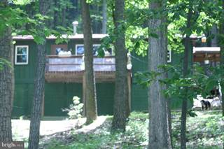 Single Family for sale in 1278 RED FERN LANE, Capon Bridge, WV, 26704