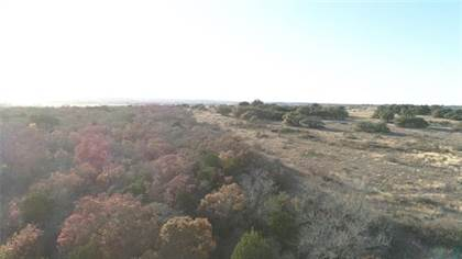 Lots And Land for sale in Tbd CR 523-Tract 2, Evant, TX, 76525