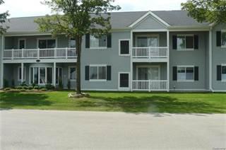 Condo for sale in 1127 S LAKE Drive 120, Novi, MI, 48377
