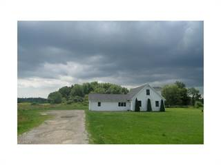 Single Family for sale in 6020 Fenkell Rd, Andover, OH, 44003