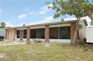 Single Family for sale in 13530 SANTA ROSA AVENUE, Port Charlotte, FL, 33981