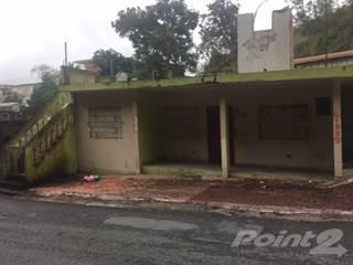 Residential for sale in BARRIO PALOMAS SECTOR LA LOMA- COMERIO (REPO), Beatriz, PR, 00736
