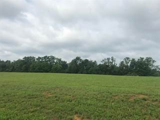 Land for sale in 108  Beretta Court, Coxs Creek, KY, 40004