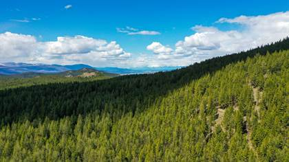 Lots And Land for sale in 160 Acres Banks Draw, Rexford, MT, 59930