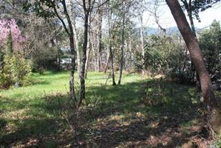 Land for Sale Willits, CA - Vacant Lots for Sale in Willits