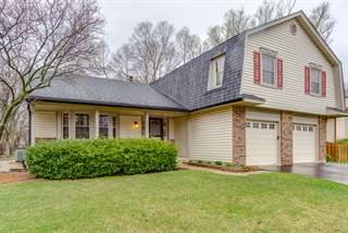Single Family for sale in 1807 Louisiana Drive, Elk Grove Village, IL, 60007