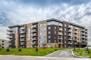Apartment for rent in Le Saint-Laurent Apartments, Brossard, Quebec