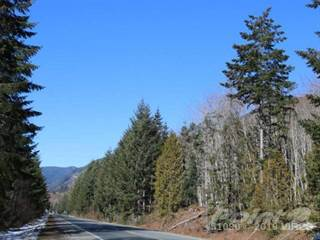 Land for sale in LT 9 Cowichan Valley Hwy, Lake Cowichan, British Columbia, V0R 2G0