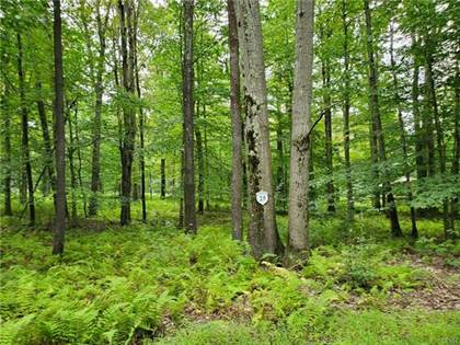 Residential Property for sale in 25 Oak Leaf Lane Lot 25, Pocono Lake, PA, 18347
