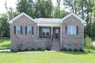 Single Family for sale in 328 Windhaven Bay, Mount Juliet, TN, 37122