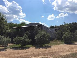 Single Family for sale in 5169 FM 1050, Rio Frio, TX, 78879