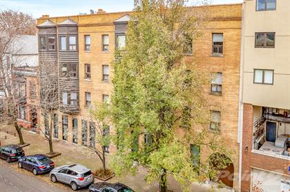 Apartment for rent in 871-77 W. Lill, Chicago, IL, 60607