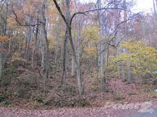 Land for sale in 79 Leisure Lane, Burnsville, NC, 28714