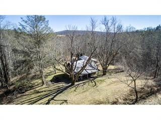 Single Family for sale in 1813 Low Gap Road, Greater Edneyville, NC, 28792