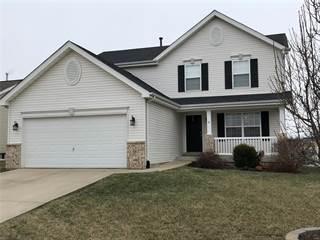 Single Family for sale in 913 Mist Flower Drive, Waterloo, IL, 62298