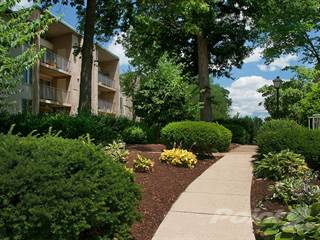 Apartment for rent in Tysons Glen Apartments & Townhomes - The Iris, Falls Church, VA, 22043