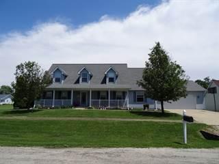 Single Family for sale in 325 East Elk Street, Odell, IL, 60460