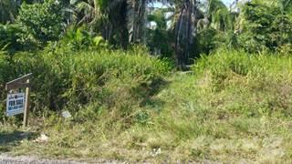 Land for sale in 75 ACRES ON BURRELL BOOM / BERMUDIAN LANDING ROAD, BELIZE DISTRICT, Burrel Boom, Belize