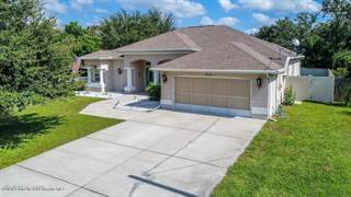 Single Family for sale in 4236 Bing Avenue, Spring Hill, FL, 34606