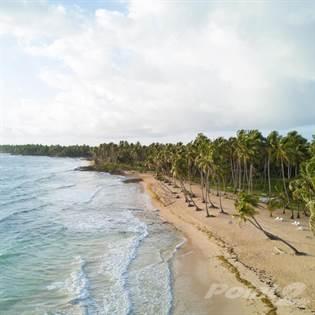 Lots And Land for sale in Lot 3 Baoba Beach (Premium), Cabrera, Maria Trinidad Sanchez