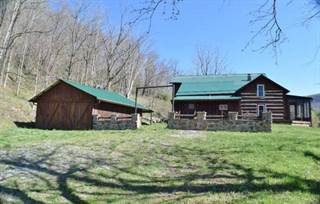 Single Family for sale in 568 MEADOWS MOUNTAIN ROAD, Sandstone, WV, 25985