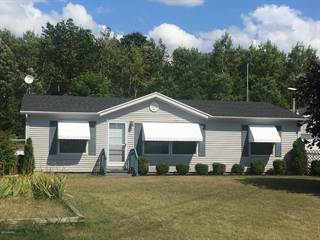 Single Family for sale in 11778 N Wyman Road, Greater Edmore, MI, 49310