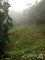Farm And Agriculture for sale in AGUAS ZARCAS 5,000 ACRE PRIMARY FOREST PROPERTY, Puerto Limon, Limón