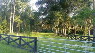 Residential Property for sale in 0 CR 231A, Lake Butler, FL, 32054