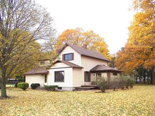 Single Family for sale in 883 East 600 North Road, Bement, IL, 61813