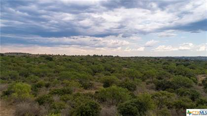 Lots And Land for sale in TBD 49 acres Ranch Road 2233, Kingsland, TX, 78639