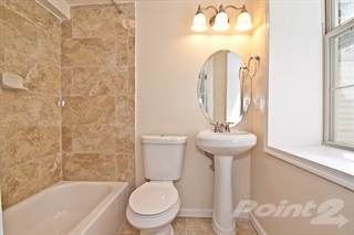 Apartment for rent in Oaklawn - Webster, Washington, DC, 20010