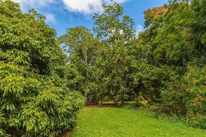 Lots And Land for sale in 3610 MOLOAA RD 2, Anahola, HI, 96703