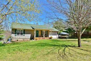 Single Family for sale in 1453 Lakeview Road North, Oak Run, IL, 61428
