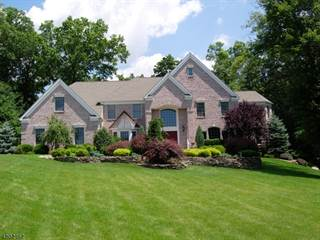 Single Family for sale in 12 Mattben Dr, Warren, NJ, 07059