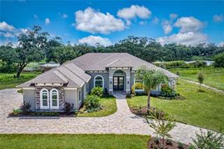 Single Family for sale in Lot 13 TROTTING HORSE LANE, Tavares, FL, 32778