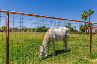 Land for sale in 3917 E BROOKS FARM Road, Gilbert, AZ, 85298