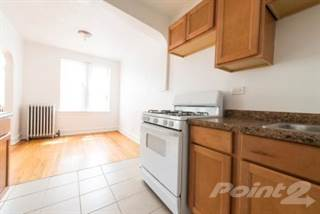 Apartment for rent in 222 E 109th St - 1 Bedroom, Chicago, IL, 60628
