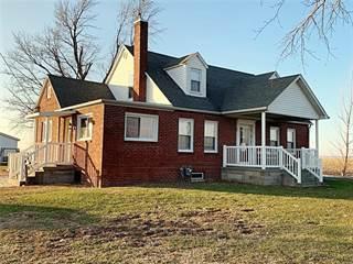 Single Family for sale in 839 Il 185, Farina, IL, 62838