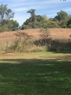 Lots And Land for sale in 0 St Rt 3117, South Shore, KY, 41175