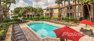 Apartment for rent in Park Crest at Innisbrook, Palm Harbor, FL, 34683