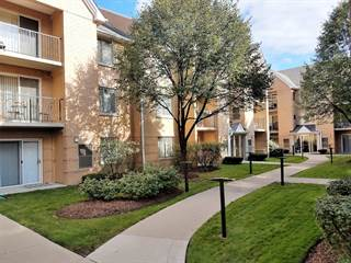 Condo for sale in 8710 West EVELYN Lane 306, Chicago, IL, 60656