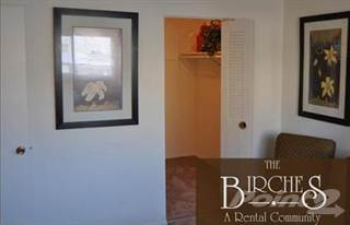 Apartment for rent in The Birches Apartments - 2 Bed River Birch, Joliet, IL, 60435