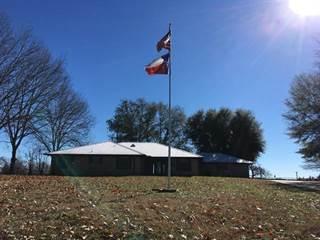 Single Family for sale in 2203 County Road SW 3250, Winnsboro, TX, 75494