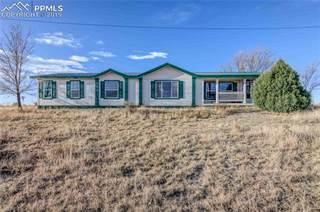 Single Family for sale in 9132 Avenida Hermosa View, Fountain, CO, 80817