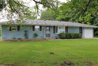 Single Family for sale in 29454 BEAN CREEK RD, Potomac, IL, 61865