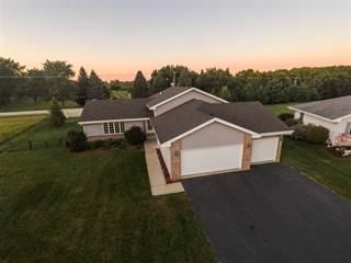 Single Family for sale in 806 GREENLEE, Winnebago, IL, 61088