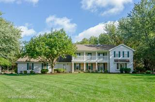 Single Family for sale in 17N385 Binnie Lakes Trail, Dundee, IL, 60118